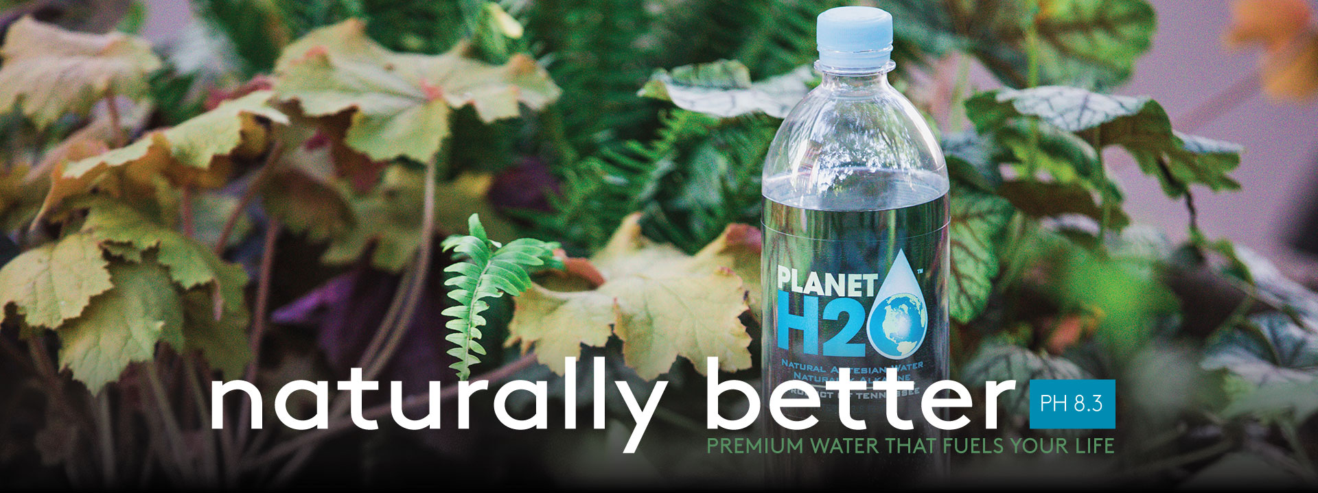 Premium Water that Fuels your life PH8.3